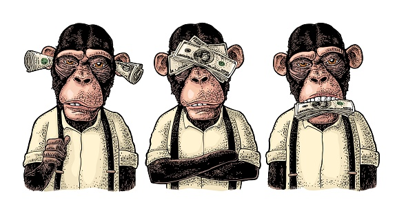Three wise monkeys with money on ears, eyes, mouth. Not see, not hear, not speak. Vintage color engraving illustration for poster, web, t-shirt, tattoo. Isolated on white background