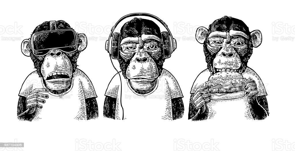 Three wise monkeys. Not see, not hear, not speak. Vintage engraving vector art illustration