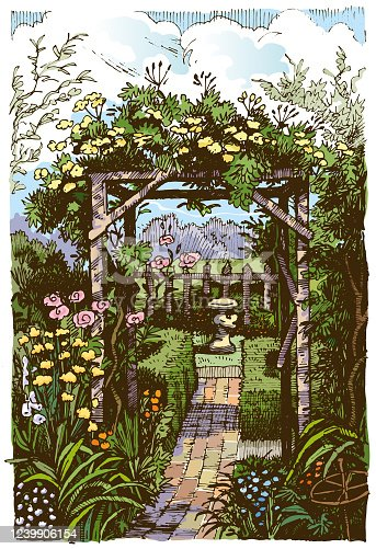A cottage garden in pen and ink and colour