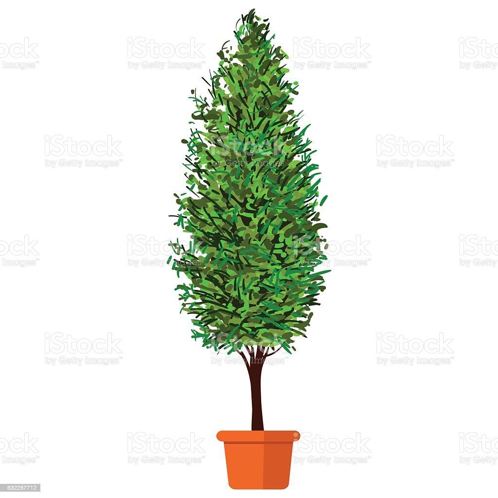 Thuja albero in porflower - illustrazione arte vettoriale