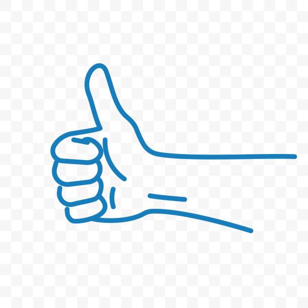 bildbanksillustrationer, clip art samt tecknat material och ikoner med tummen upp vektor ikonen eller hand finger upp som gest av skissen linje - thumbs up