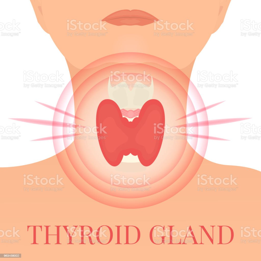 Glande thyroïde dans une cible de douleur - clipart vectoriel de Adulte libre de droits