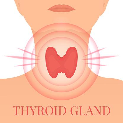 Tiroid Bezinde Bir Ağrı Hedef Stok Vektör Sanatı & Acı'nin Daha Fazla Görseli