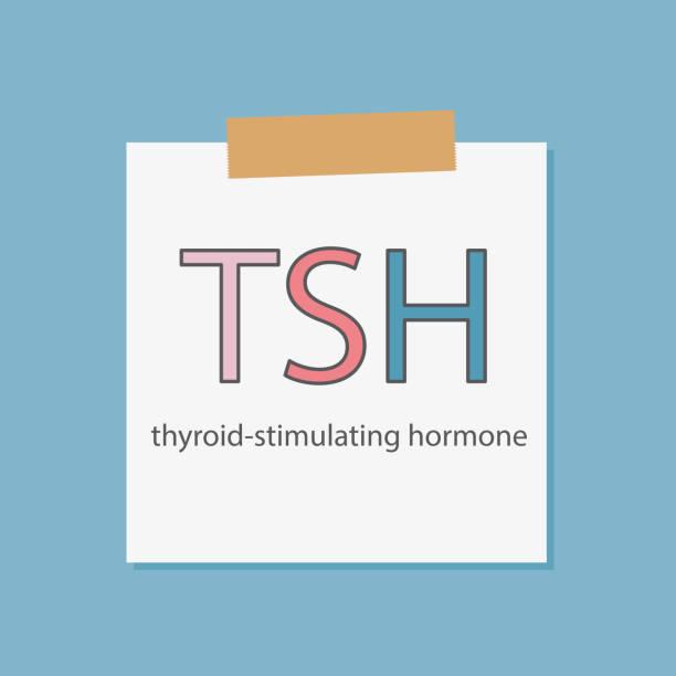 ilustraciones, imágenes clip art, dibujos animados e iconos de stock de tsh tirotropina escrito en un papel de cuaderno - thyroxine
