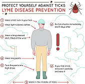 Protect yourself against ticks. Lyme disease prevention poster. Human skin parasite. Danger for health from tick bite, borreliosis infection. Editable vector illustration in simple outline style.