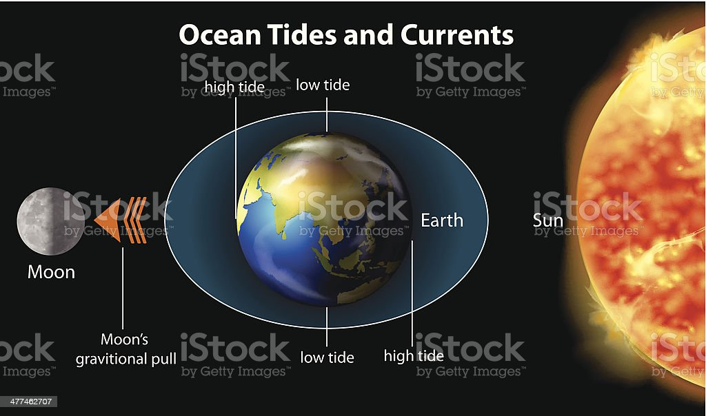Tidal movements on Earth vector art illustration