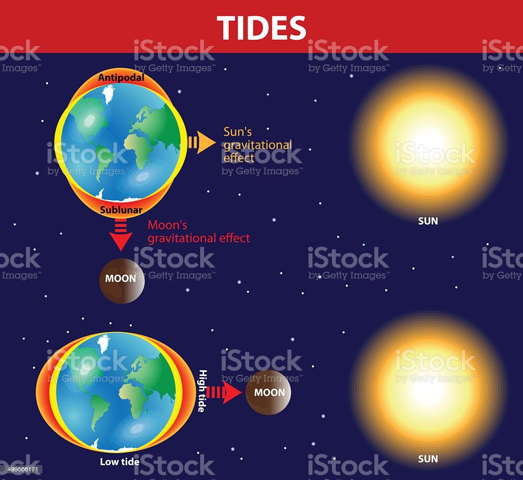 Tides. Vector diagram. vector art illustration