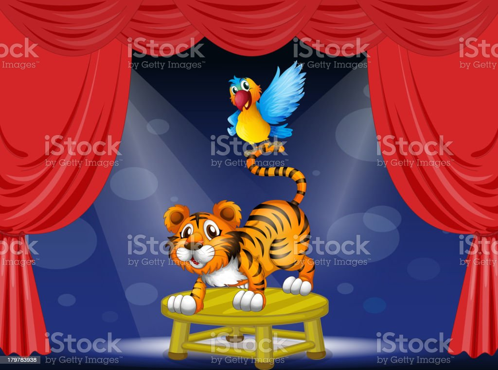 Tiger and a colorful parrot performing on the stage vector art illustration