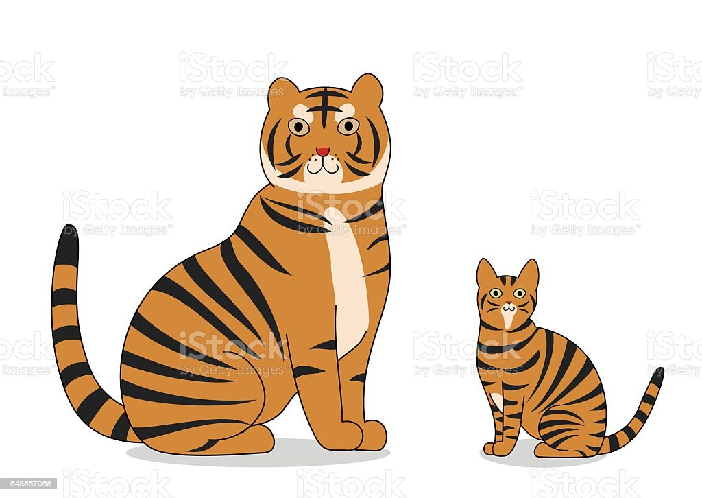 tiger and toyger cat vector art illustration
