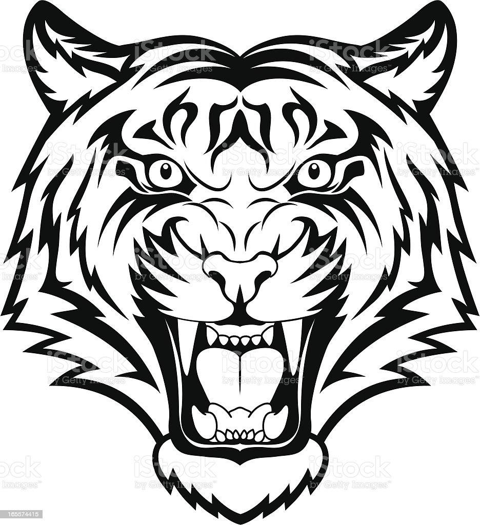 Tiger anger vector art illustration