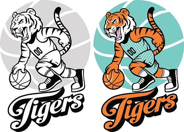 tiger basketball mascot - high school sports stock illustrations