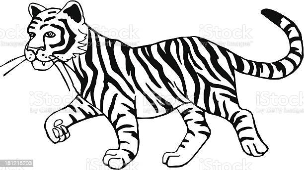 Tiger cub vector id181218203?b=1&k=6&m=181218203&s=612x612&h=gayq2mie6ngvxbpnhf0edzxrtbk5ru8ftzvanaefjmu=