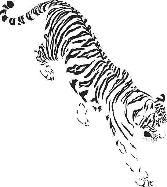 タイガー降順 b &w - トラ点のイラスト素材/クリップアート素材/マンガ素材/アイコン素材