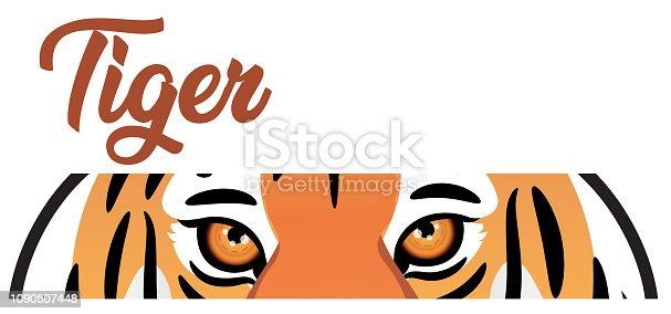 istock Tiger Eye 1090507448