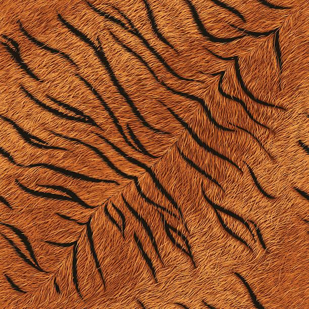 tiger fur (seamless tile) - fur texture stock illustrations, clip art, cartoons, & icons