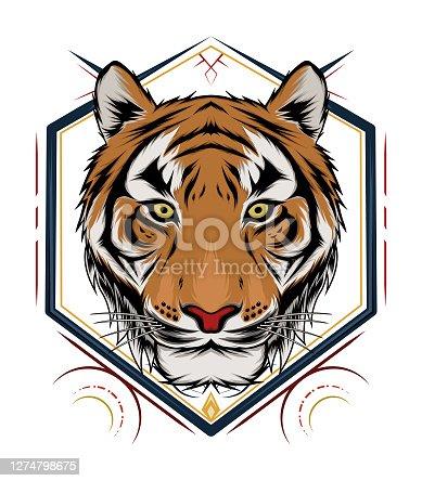 Tiger head illustration. design tiger. design for T shirt , mascot, logo team, sport, metal printing, wall art, sticker