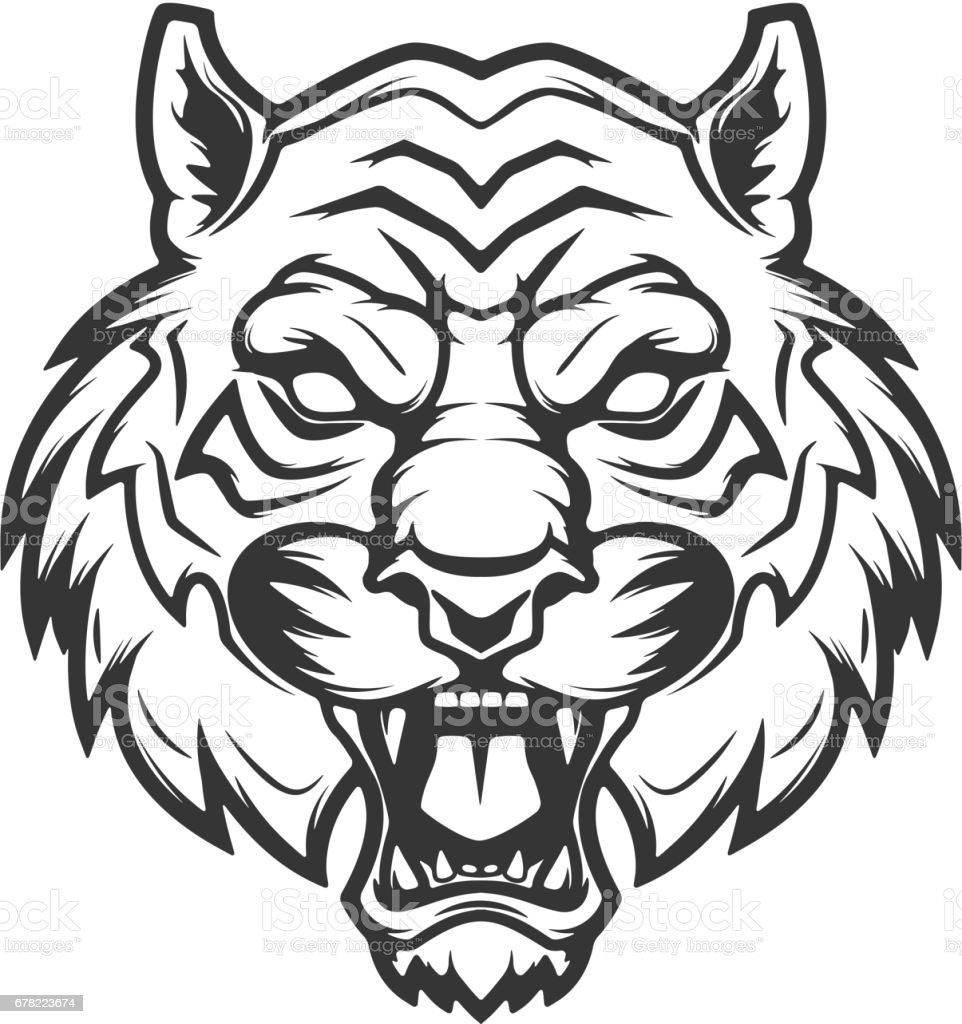 tiger head illustration isolated on white background. Images for  label, emblem. Vector illustration. vector art illustration