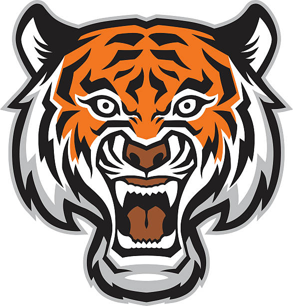 Tête de tigre Mascotte - Illustration vectorielle