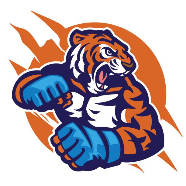 tiger head of MMA fighter vector art illustration