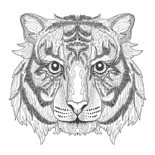 Ausmalbilder Tiger Vektorgrafiken und Illustrationen - iStock