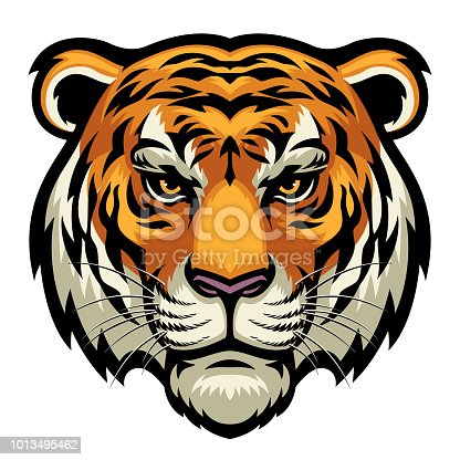 vector of tiger head in complex and detailed style