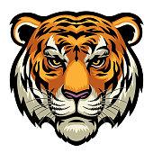 istock tiger head 1013495462