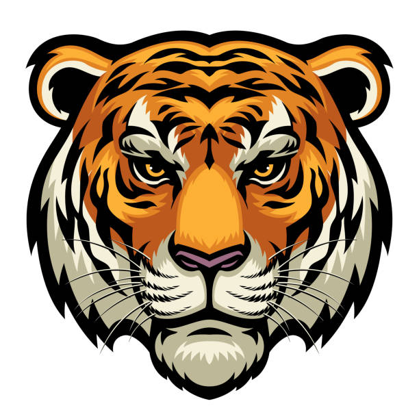 tiger head vector of tiger head in complex and detailed style mascot stock illustrations