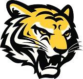 istock Tiger Head 491782311