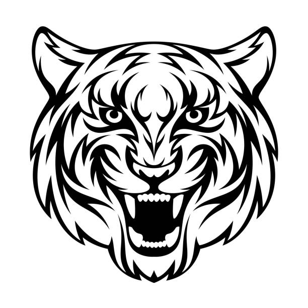 6 051 Tiger Face Illustrations Royalty Free Vector Graphics Clip Art Istock