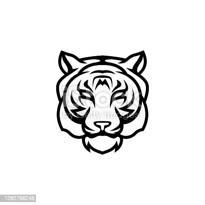 tiger head vector on white background