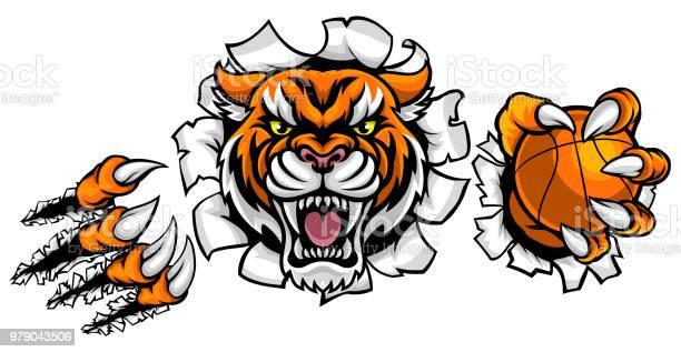 Tiger holding basketball ball breaking background vector id979043506?b=1&k=6&m=979043506&s=612x612&h=kgtq7aljb5sqtk5 yjqbuaglglwgjb4w29h3srckpk4=
