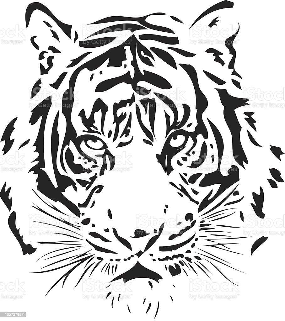 Tiger illustration in black lines royalty-free tiger illustration in black lines stock vector art & more images of animal markings
