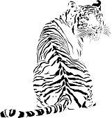 Tiger looking backwards, in black lines