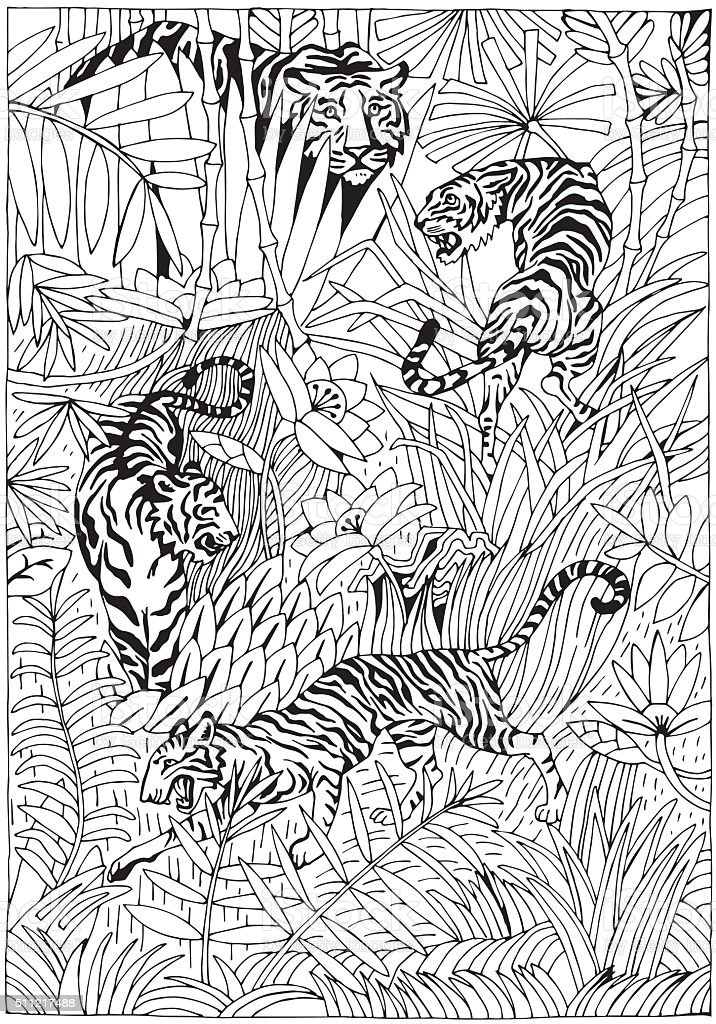 Tiger In The Jungle Coloring Page Royalty Free Stock
