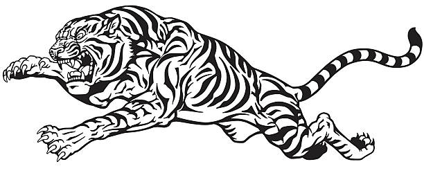 Top 60 Jumping Tiger Clip Art, Vector Graphics and ...