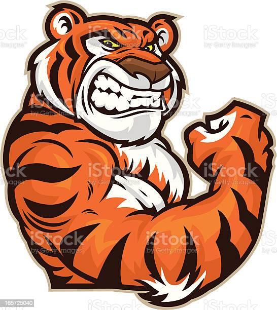 Tiger mascot flexing vector id165725040?b=1&k=6&m=165725040&s=612x612&h=9abk jht5pxamvomjgadmzymb3lu1pty83u4jwhsqww=