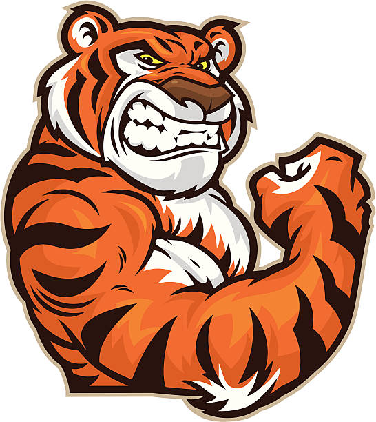 tiger mascot flexing - tiger stock illustrations, clip art, cartoons, & icons