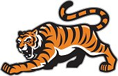 vector of tiger mascot