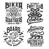 Tiger, panther, cobra and boar t-shirt print mockup with vector wild animals and snake. Biker or motorcycle riders and fight club custom apparel of martial art and motor race sport design