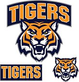 istock Tiger Sport Kit 815975474
