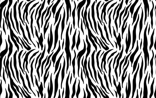 Tiger stripes seamless pattern, animal skin texture, abstract ornament for clothing, fashion safari wallpaper, textile, natural hand drawn ink illustration, black and orange camouflage, tropical cat Tiger stripes seamless pattern, animal skin texture, abstract ornament for clothing, fashion safari wallpaper, textile, natural hand drawn ink illustration, black and orange camouflage, tropical cat tiger stock illustrations