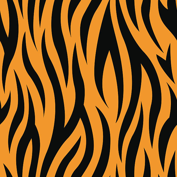 stockillustraties, clipart, cartoons en iconen met tiger stripes seamless pattern - tijger