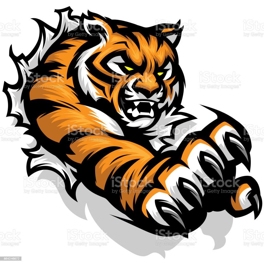 Tiger Tearing vector art illustration