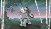 Vector Illustration for year of the tiger - white tiger.