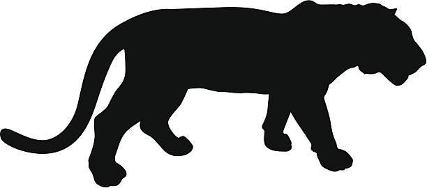 タイガー - トラ点のイラスト素材/クリップアート素材/マンガ素材/アイコン素材