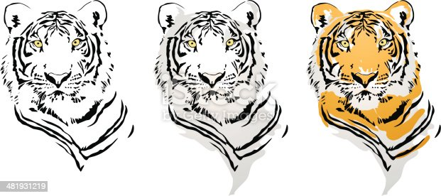 Vector File Tiger Head with Three Style