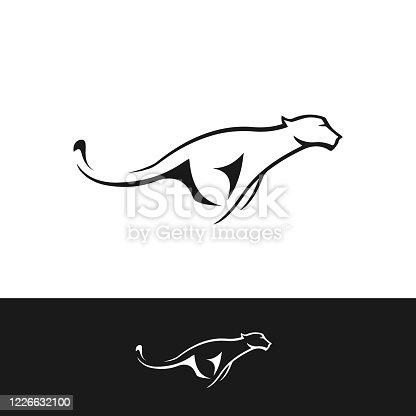 Cheetah or tiger vector design made in editable vector file.