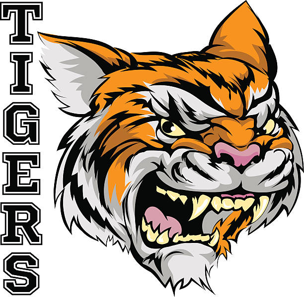 Tigers Sports Mascot vector art illustration