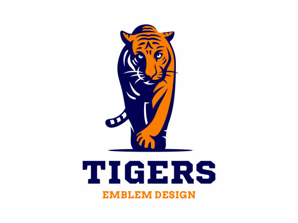Tiger Tail Illustrations, Royalty-Free Vector Graphics ...