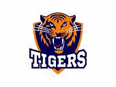 Tigers - logo, icon, illustration on white background